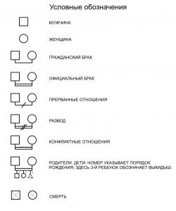 генограмма 5 испр